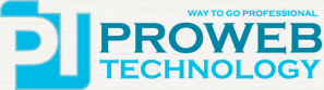 www.prowebtechnology.com.au - web desiging and hosting company in US and Australia